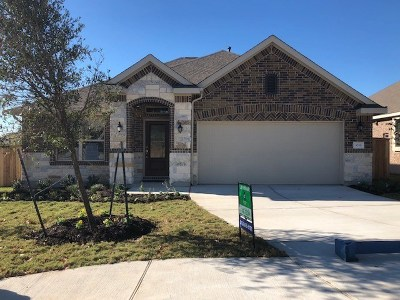 Georgetown Single Family Home For Sale: 3016 Rabbit Creek Dr
