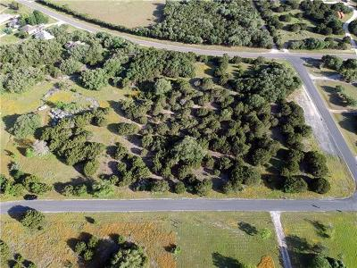 Liberty Hill Residential Lots & Land For Sale: 40 Westfall Trl