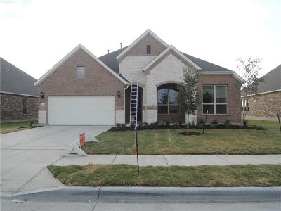 Pflugerville Single Family Home For Sale: 20520 Amity Way