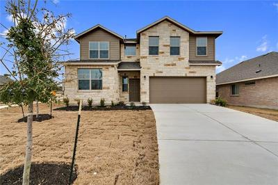 Round Rock Single Family Home For Sale: 944 Palo Duro Dr