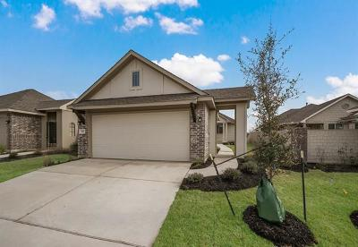 San Marcos Single Family Home For Sale: 518 Silo
