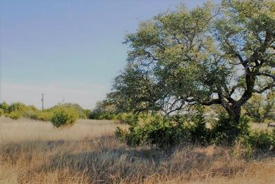 Dripping Springs Residential Lots & Land For Sale: Redemption Ave Lot 31
