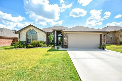 Belton Single Family Home For Sale: 2205 Yturria Dr