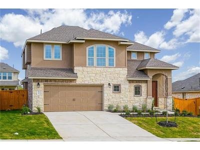 Kyle Single Family Home For Sale: 131 Compass Lane