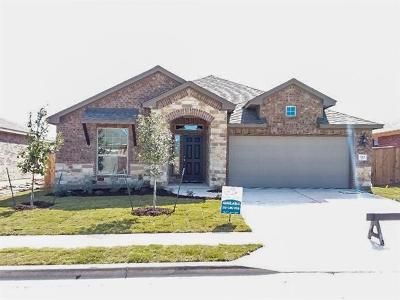 Round Rock Single Family Home For Sale: 1313 Chad Dr
