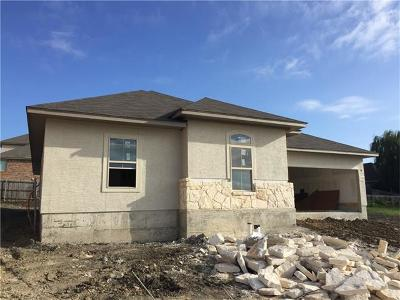 New Braunfels Single Family Home For Sale: 1384 Kamryn Way