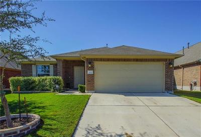 Buda Single Family Home For Sale: 272 Strawberry Blonde Dr