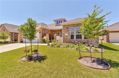 Buda TX Single Family Home For Sale: $359,000