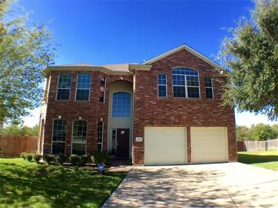 Pflugerville Single Family Home For Sale: 2805 Red Ivy