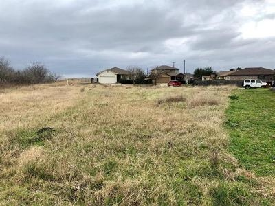 Del Valle Residential Lots & Land For Sale: 12008 Morning View Dr