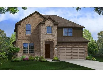 Buda, Kyle Single Family Home For Sale: 284 Esperanza Dr
