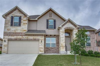 New Braunfels Single Family Home For Sale: 1305 Hidden Cave Dr