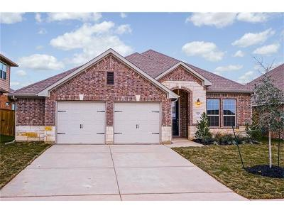 Round Rock Single Family Home For Sale: 3220 Hidalgo Loop