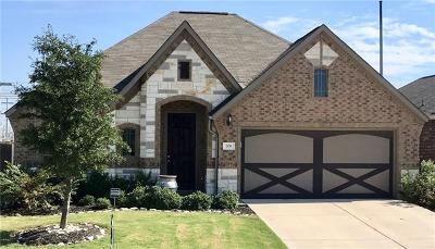 Hutto Single Family Home For Sale: 206 Emory Fields Dr