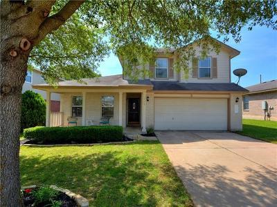 Kyle Single Family Home For Sale: 118 Remington Dr