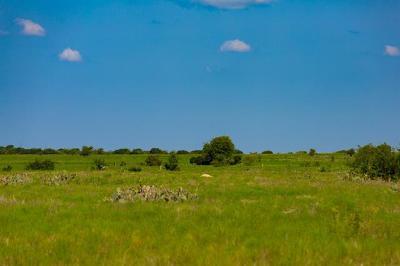 Bertram TX Farm For Sale: $109,000