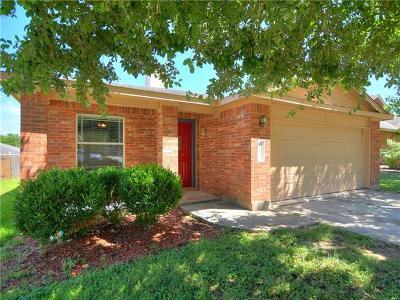 Kyle Single Family Home For Sale: 107 Palo Duro Cv