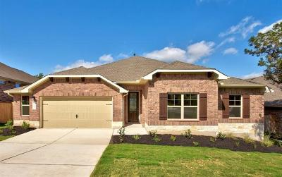 Kyle Single Family Home For Sale: 285 Cypress Forest Dr