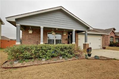 Kyle Single Family Home For Sale: 1384 Twin Cv