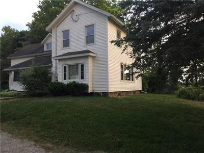 Other MI Single Family Home For Sale: $299,000