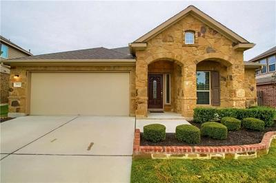 Pflugerville Single Family Home For Sale: 2932 Open Plain Dr