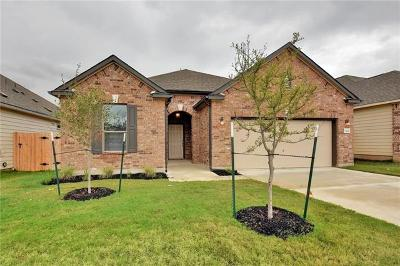 Austin Single Family Home For Sale: 7928 Springfield Dr