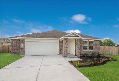 Kyle Single Family Home For Sale: 100 Jackson Blue Ln