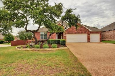 Austin Single Family Home Pending - Taking Backups: 187 Raindance Cv