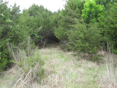 Hays County Residential Lots & Land For Sale: 200 Barton Meadow Dr