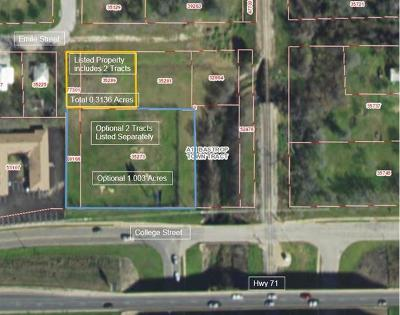 Bastrop County Residential Lots & Land For Sale: 1201 Emile St
