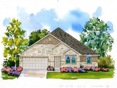 Pflugerville Single Family Home For Sale: 3908 Harbor Point Drive