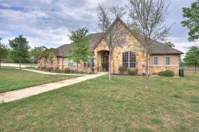 Georgetown Single Family Home For Sale: 201 Russell Park Dr