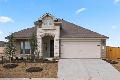 Kyle Single Family Home For Sale: 257 Knots Landing