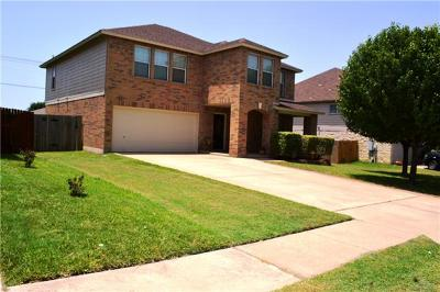 Round Rock Single Family Home For Sale: 4112 Cisco Valley Dr