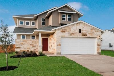 Elgin Single Family Home For Sale: 114 Saranac Drive Dr