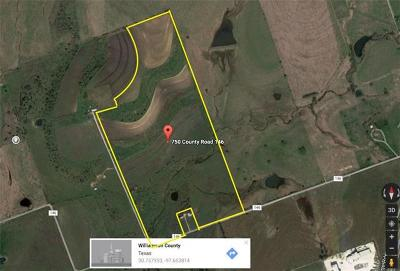 Georgetown Farm For Sale: 750 County Road 146