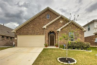 Hays County Single Family Home For Sale: 229 Joseph Dr