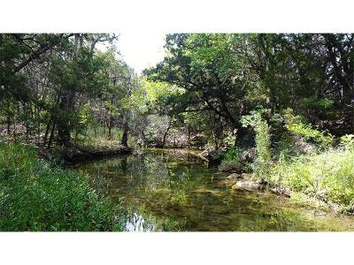 Travis County Residential Lots & Land For Sale: 10001 Silver Mountain Dr