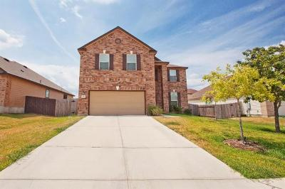 Kyle Single Family Home For Sale: 401 Waterleaf Blvd