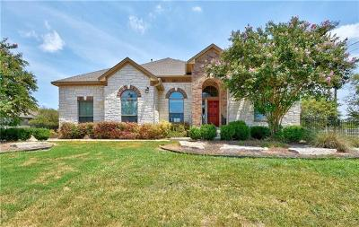 Dripping Springs Single Family Home For Sale: 120 White Wash Way