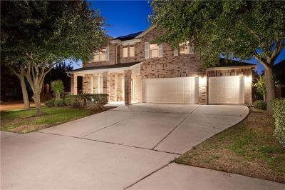 Round Rock Single Family Home For Sale: 702 Green Vista Ct