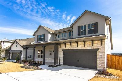 Dripping Springs Single Family Home For Sale: 585 Dayridge Dr Dr