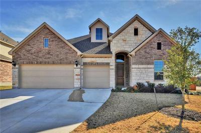 Leander Single Family Home For Sale: 3804 Mineral Dr
