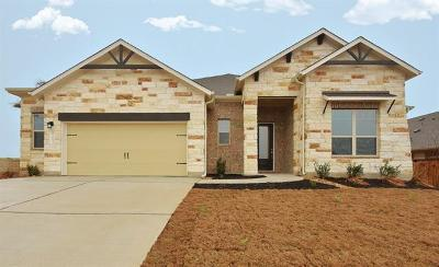 Kyle Single Family Home Pending - Taking Backups: 213 Cibolo Dr