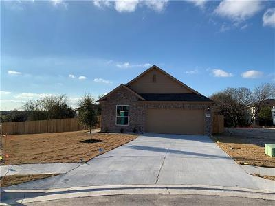 Austin Single Family Home For Sale: 14900 Spring Hill Ln