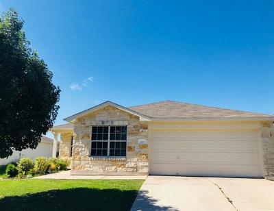 Hutto Single Family Home For Sale: 221 Almquist St