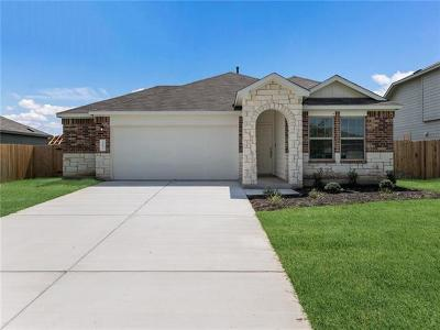 Kyle Single Family Home For Sale: 167 Mineral Springs Dr