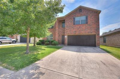 Cedar Park Single Family Home For Sale: 519 Paseo Grand Dr