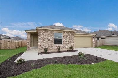 Kyle Single Family Home For Sale: 187 Jackson Blue Ln