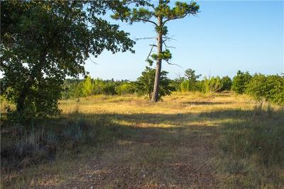 Bastrop Residential Lots & Land For Sale: 507 Kaanapali Ln